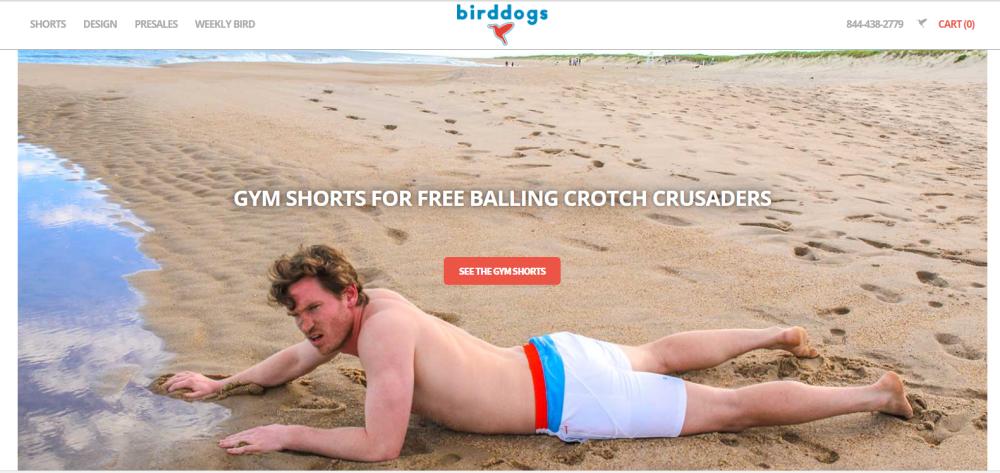 birddogs-frontpage
